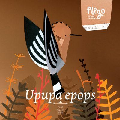 upupa_epops
